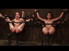 The Stream Porn